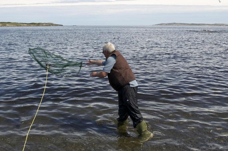 碧山旅行-看渔民如何轻松玩转,又快又准