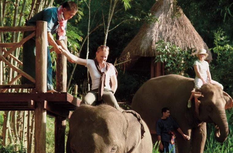 碧山旅行-非在大自然中与动物面对面