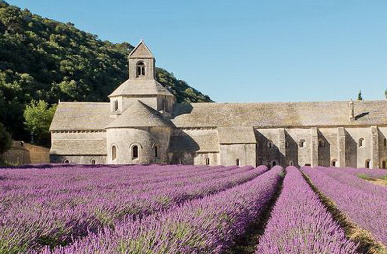 碧山旅行-法国旅游,感受真实普罗旺斯